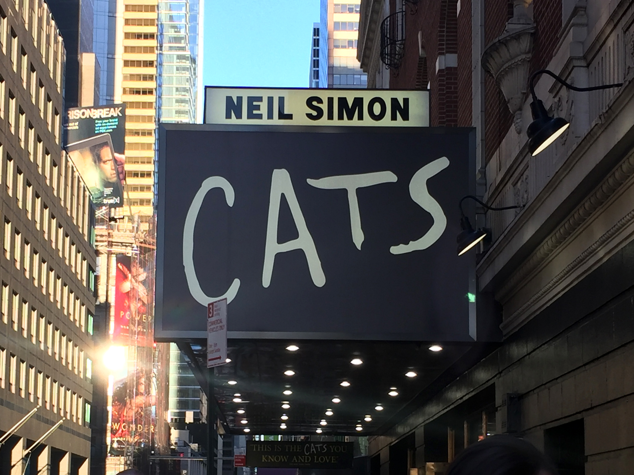 Cats in Neil Simon Theatre 2017.