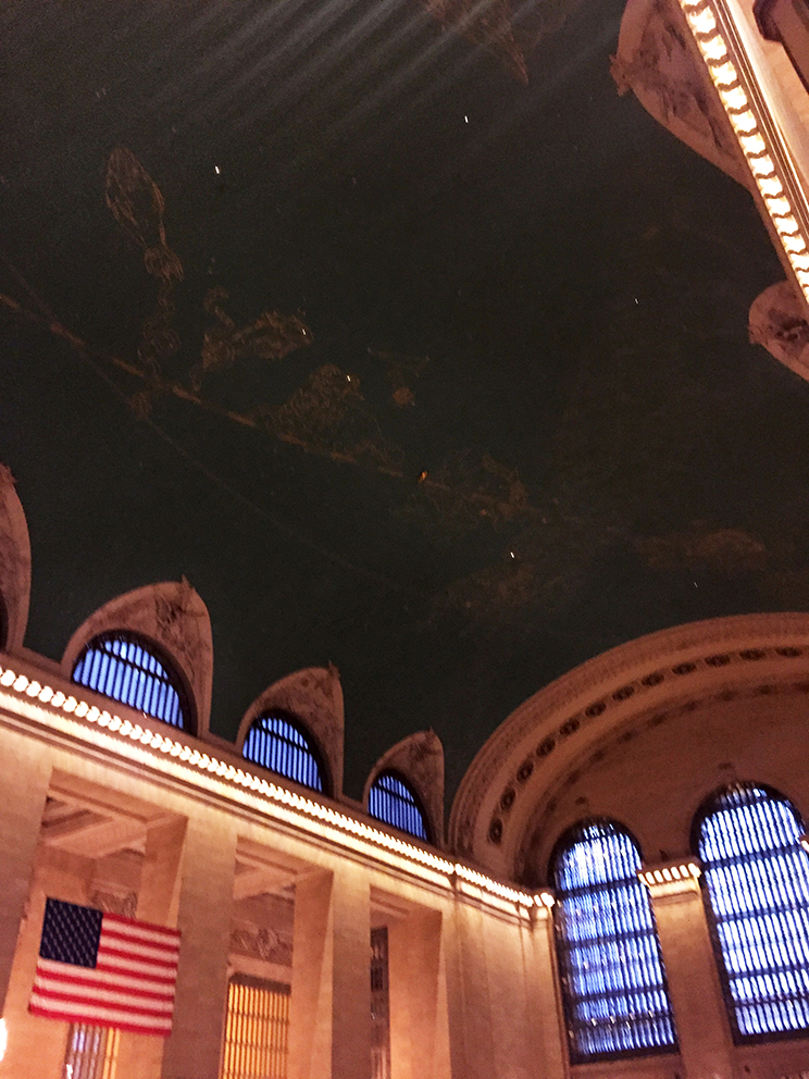 Ceiling with starry sky - equator, ecliptic and the zodiac signs can be seen.